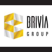 Brivia Group-resized logo